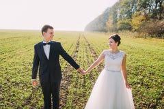 Le portrait en gros plan des nouveaux mariés tenant des mains dans le domaine vert Images libres de droits