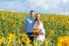 Le portrait extérieur de jeunes couples enceintes en tournesols mettent en place un jour ensoleillé lumineux Image authentique de photos stock