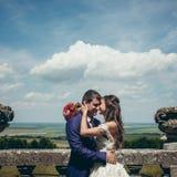 Le portrait romantique sensible des beaux nouveaux mariés heureux frottant tendrement flaire au fond de la vue du Image libre de droits