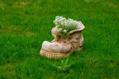 Le pot de fleur dans la forme de la chaussure avec la floraison fleurit avec le spac de copie photographie stock libre de droits