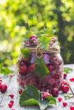 Le pot en verre porte des fruits des cerises et des framboises Photo stock