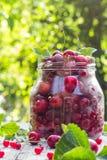 Le pot en verre porte des fruits des cerises et des framboises Image libre de droits