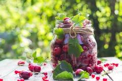 Le pot en verre porte des fruits des framboises de cerises photos stock