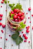 Le pot en verre porte des fruits des groseilles de cerises photo libre de droits