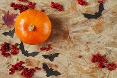 Le potiron et les battes du papier sur la planche en bois Image stock