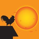 Le poulet chantent au lever de soleil Image libre de droits