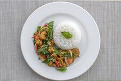 Le poulet croustillant cuit avec le basilic doux mangent avec du riz Image libre de droits