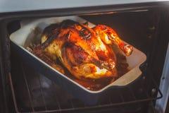 le poulet cuit au four appétissant avec la croûte rôtie d'or a fait cuire dans photographie stock libre de droits
