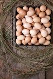 Le poulet eggs dans une forme carrée sur un plancher en bois Image libre de droits