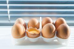Le poulet eggs sur le fond des abat-jour par lesquels la lumière du soleil se casse Image libre de droits