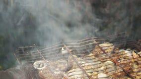 Le poulet et les oignons ont fait cuire sur le gril de barbecue banque de vidéos