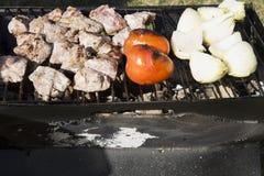 Le poulet, les tomates et les oignons sur un charbon de bois grillent Photos libres de droits