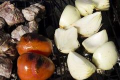 Le poulet, les tomates et les oignons sur un charbon de bois grillent Photos stock