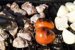 Le poulet, les tomates et les oignons sur un charbon de bois grillent Image libre de droits