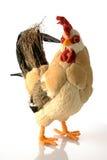 Le poulet puissant Image libre de droits