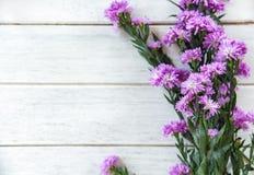 Le pourpre de marguerite des prés et le cadre de fleurs de statice décorent sur le fond en bois blanc photo stock