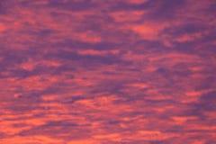 Le pourpre vibrant opacifie le coucher du soleil images stock