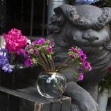 Le pré fleurit des lupines Photo libre de droits