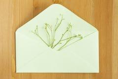 Le pré sauvage fleurit avec le papier ouvert enveloppent sur le fond en bois Configuration plate Vue supérieure photographie stock libre de droits