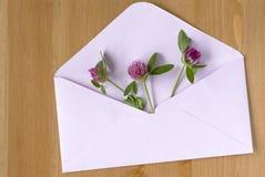 Le pré sauvage fleurit avec le papier ouvert enveloppent sur le fond en bois Configuration plate Vue supérieure images stock