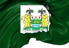 Le Président Standard du Sierra Leone Photographie stock libre de droits