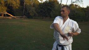 Le praticien de karaté un homme dans le kimono exécute le kata tôt le matin sur la clairière dans le parc de ville banque de vidéos