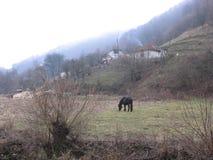 Le Prerasts de Vratna en Serbie image stock