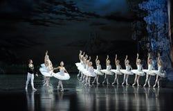 Le prince d'amour le plus beau sur le lac swan de cygne-ballet Photos libres de droits