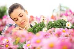 Le printemps, femme touche le pétale de la marguerite dans le jardin photo stock