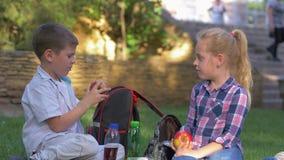 Le problème des enfants, petit garçon sans dents de lait mord mal la pomme a alors dérangé et met le fruit dans la séance de sac  clips vidéos