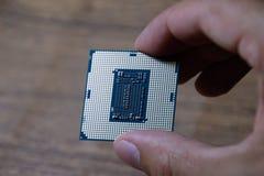 Le processeur est un ordinateur de bureau à disposition Inspectez les contacts d'unité centrale de traitement avant l'installatio image libre de droits