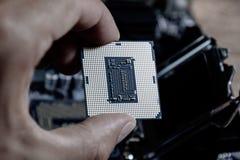Le processeur est un ordinateur de bureau à disposition Inspectez les contacts d'unité centrale de traitement avant l'installatio images libres de droits