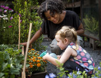 Le professeur et la petite fille instruisent apprendre le jardinage d'écologie images stock