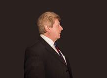 Le profil de l'homme d'affaires supérieur sérieux Image libre de droits