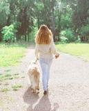 Le propriétaire et le golden retriever heureux poursuivent la marche en été Photos libres de droits