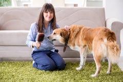 Le propriétaire heureux de chien de femme à la maison avec le golden retriever Image stock
