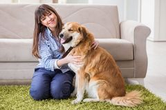 Le propriétaire heureux de chien de femme à la maison avec le golden retriever Photo stock