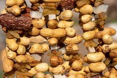 Le prugne delle arachidi delle arachidi data l'uva passa secca del ribes frutti asciutti immagine stock libera da diritti