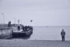 Le quai de la Crimée Yalta des pêcheurs de la Mer Noire au phare dans des oiseaux d'automne pilotent la mouette Photos libres de droits