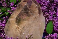 Le quartz citrin naturel ?norme de cath?drale du Br?sil a entour? par la fleur lilas pourpre photos stock
