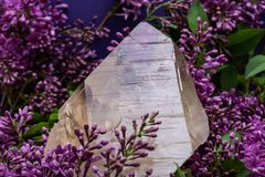 Le quartz citrin naturel ?norme de cath?drale du Br?sil a entour? par la fleur lilas pourpre photo libre de droits