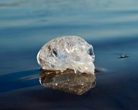 Le quartz clair a découpé l'étranger maya ovale Crystal Skull s'étendant sur le sable humide au lever de soleil photos libres de droits