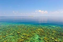 Le récif coralien des Maldives Photographie stock libre de droits