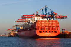 Le récipient tend le cou dans le port de Hambourg, Allemagne Photo libre de droits
