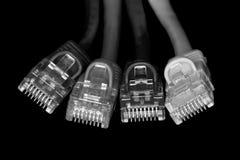 Le réseau câble B&W Photo libre de droits