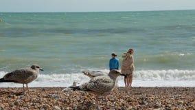Le R-U, Brighton Les trois jeunes des vacances d'été se tenant sur la plage près de l'eau de l'Océan Atlantique Le type banque de vidéos
