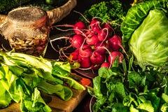 Le radis rouge, le chou, la laitue et la MELiSSA sont sur la table photographie stock