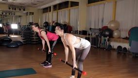 Le ragazze che fanno gli esercizi con sport attaccano nella palestra sportswear stock footage