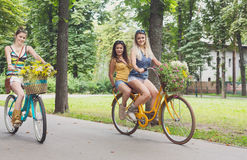 Le ragazze eleganti di boho felice guidano insieme sulle biciclette in parco Fotografia Stock