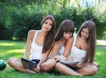 Le ragazze felici studiano in una sosta Fotografia Stock Libera da Diritti